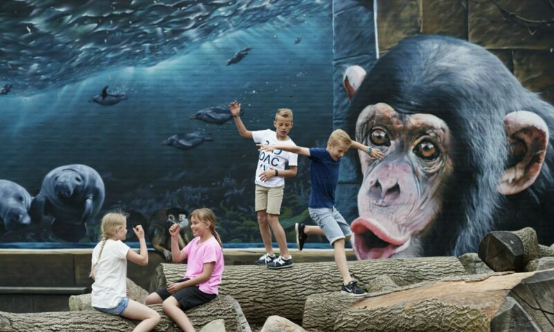 Odense-Zoo is one of many fun things to do in Odense with kids