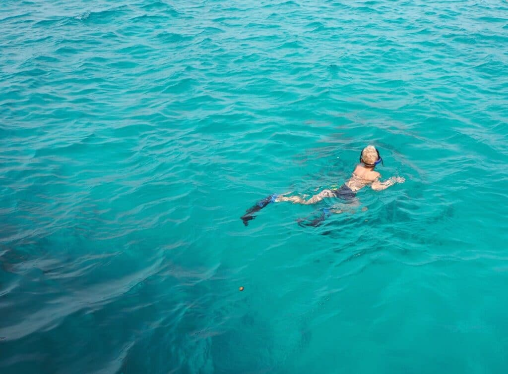 Snorkeling in Sharm el-Sheikh